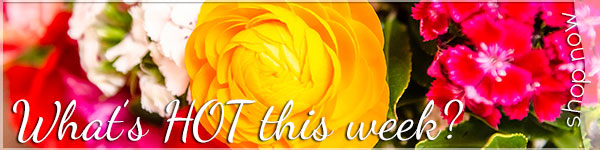 What's HOT this week at Backstage Florist?  Click to see the latest special!
