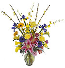 FTD Joy of Spring Bouquet from Backstage Florist in Richardson, Texas