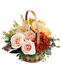 FTD Bountiful Garden Bouquet from Backstage Florist in Richardson, Texas