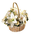 FTD Divinity Basket from Backstage Florist in Richardson, Texas