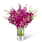 The FTD Orchid Bouquet by Vera Wang from Backstage Florist in Richardson, Texas