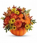 Teleflora's Warm Fall Wishes Bouquet from Backstage Florist in Richardson, Texas