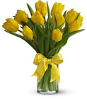 Sunny Yellow Tulips from Backstage Florist in Richardson, Texas