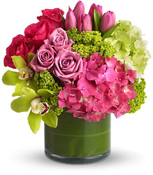 New Sensations from Backstage Florist in Richardson, Texas