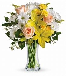 Teleflora's Daisies and Sunbeams from Backstage Florist in Richardson, Texas