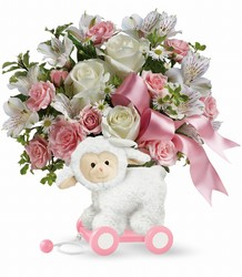 Teleflora's Sweet Little Lamb - Baby Pink from Backstage Florist in Richardson, Texas