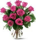 12 Hot Pink Roses from Backstage Florist in Richardson, Texas