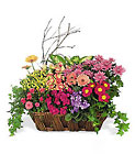 Deluxe European Garden Basket from Backstage Florist in Richardson, Texas